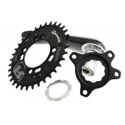 Rotor Spider per QX1 Specialized